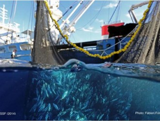 我国渔业装备如何顺势突围?