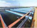 物联网中水产养殖管理的应用方案