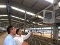 北京智能化监测畜禽养殖环境实现提质增效