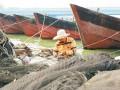 """海南省推进渔业生产与海洋生态保护""""双提升"""" """"牧洋""""""""护洋""""双曲和鸣"""